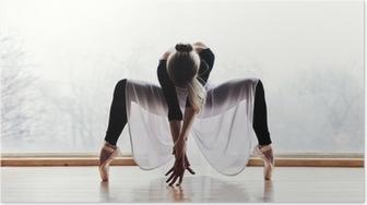 Poster Danceur de ballet