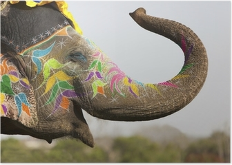 Decorated elephant at the elephant festival in Jaipur Poster