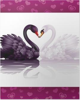 Poster Deux cygnes gracieux dans l'amour: coeur noir et blanc