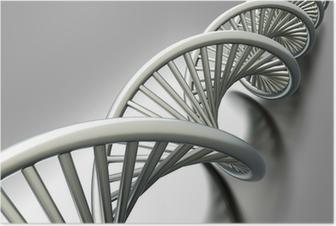 DNA Strang Poster