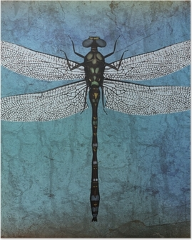 Dragonfly grunge background Poster