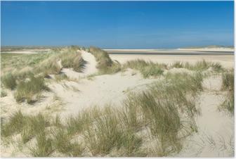 Poster Duinen aan de kust