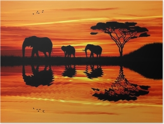 Elephant silhouette at sunset Poster