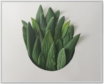 Poster en cadre Arrangement minimal créatif de feuilles vertes. concept de nature. pose à plat.