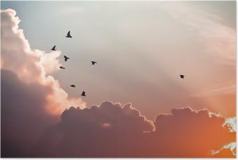 Poster Fåglar ovanför molnen