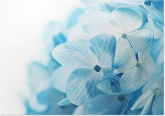 Poster Fond fleurs