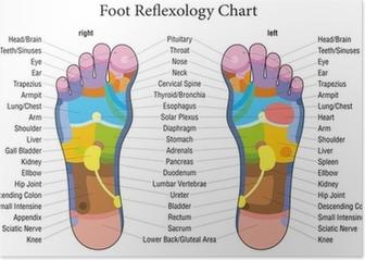 Foot reflexology chart description Poster