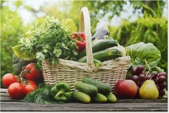 Fresh organic vegetables in wicker basket in the garden Poster