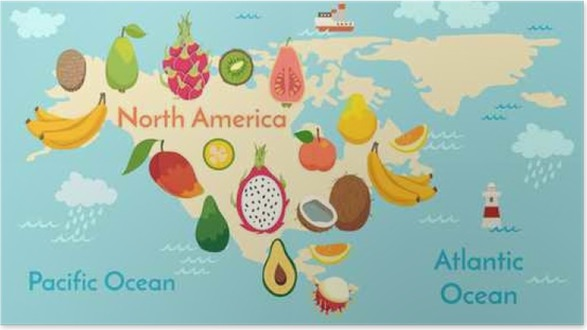 Fruit world map north america vector illustration preschool baby fruit world map north america vector illustration preschool baby continents oceans drawn earth poster gumiabroncs Image collections