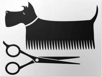 Poster Geïsoleerde verzorging hond