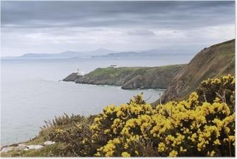 Poster Gele bloemen en de vuurtoren - Ierland