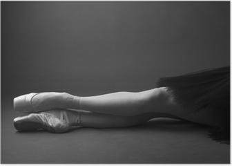 Gorgeous ballerina's legs in pointes, monochrome Poster