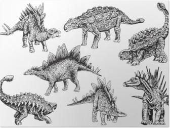 Poster Grafisk uppsättning stegosaurs och ankylosauruses isolerad på vit bakgrund, vektor skissartad illustration
