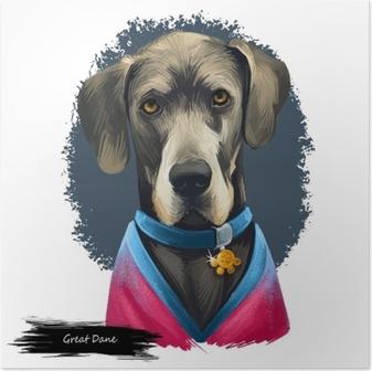 Poster Great dane, deutsche Dogge, Duitse mastiff hond digitale kunst illustratie geïsoleerd op een witte achtergrond. Duitsland afkomst, beschermhond. huisdier hand getekend portret. grafische illustraties ontwerp