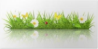 Poster Green grass