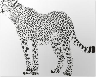 Poster Guépard - illustration vectorielle en noir et blanc