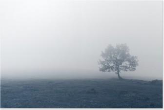 Poster HD Arbre solitaire avec le brouillard
