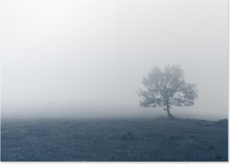 solitary tree with fog Poster HD