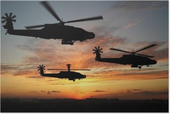 Poster Helicopters