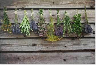 Poster Herbes de séchage sur la grange en bois dans le jardin