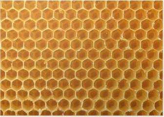 honeycomb background Poster