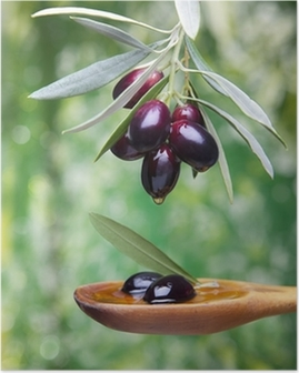 Poster Huile d olive