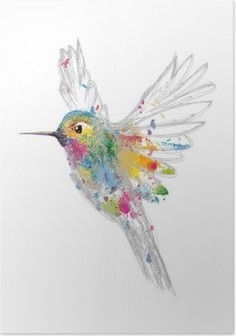 Poster Hummingbird
