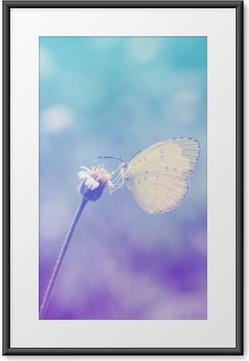 Poster i Ram Fjärilar på blommor i pastell stil.