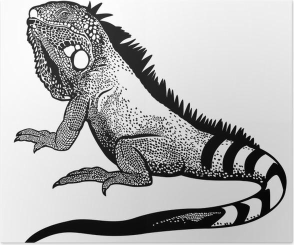 Póster Iguana verde negro blanco • Pixers® - Vivimos para cambiar