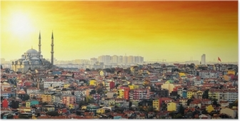 Istanbul Mosque with colorful residential area in sunset Poster