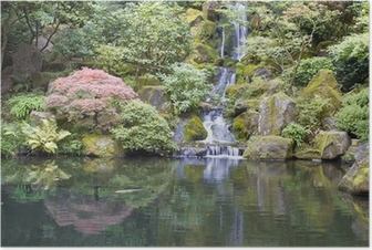 Japanese Garden Koi Pond with Waterfall Poster