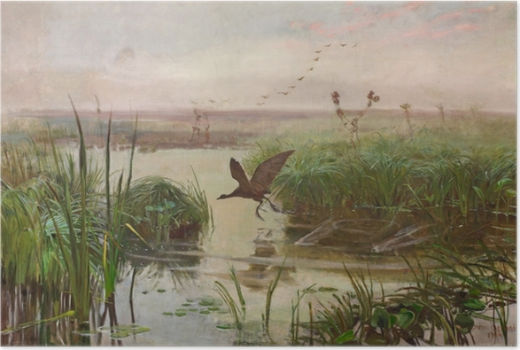 Póster Józef Chełmoński - Polla de agua - Reproductions