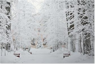Poster Kall vinter skog landskap snö