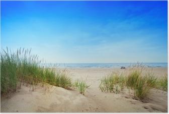 Poster Kalm strand met duinen en groen gras. Rustige oceaan