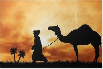 Poster Kameel in de woestijn