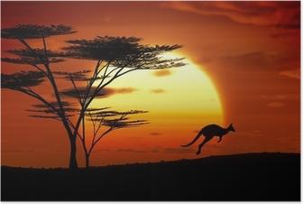 Poster Kangoeroe zonsondergang australië