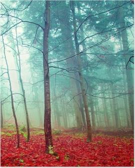 Poster Kleurrijke mystieke herfst bomen
