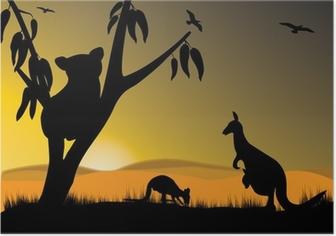 Poster Koala kangoeroe