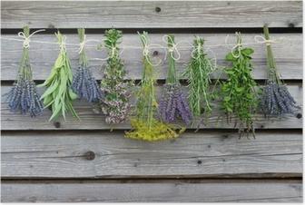 Poster Kruiden drogen op de houten schuur in de tuin