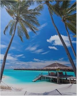 Poster Lege hangmat tussen de palmbomen op het strand