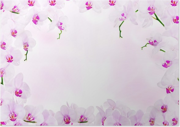 light pink decoration with orchid flower frame Poster • Pixers® • We ...