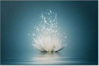Poster Lotus fleur