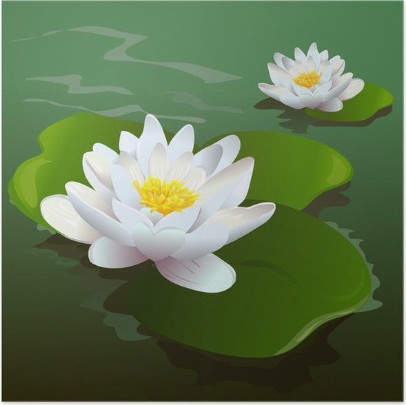 Lotus flower in the pond poster pixers we live to change lotus flower in the pond poster mightylinksfo
