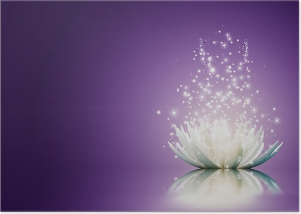 Lotus flower poster pixers we live to change lotus flower poster other feelings mightylinksfo