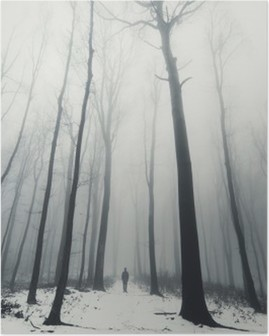 man in forest with tall trees in winter Poster