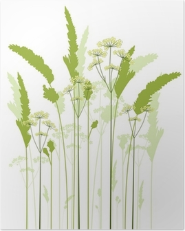 meadow grass Poster