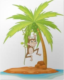 Poster Monkey