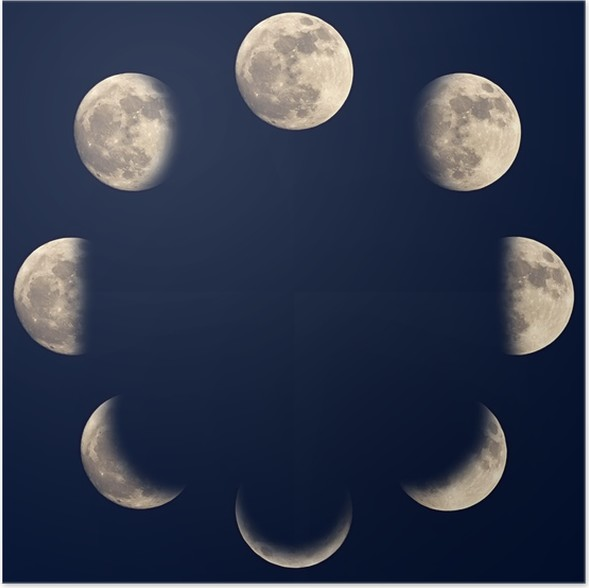Moon Phases Poster O PixersR We Live To Change