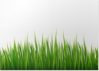 nature background with green grass vector poster pixers we live to change nature background with green grass vector