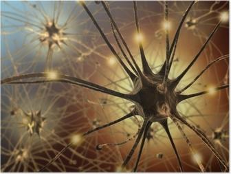 Poster Neurons